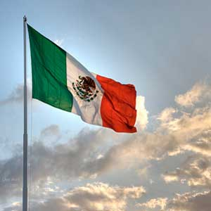 trade mission to Mexico E&M Combustion